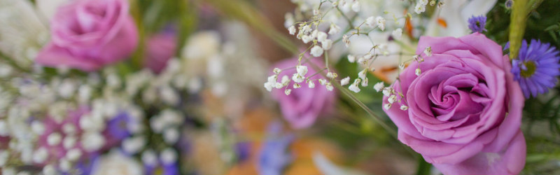Baby's breath, purple rose and blue flowers